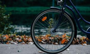 Top 10 Best Bike Trailer for Kids: Schwinn vs. Booyah vs. Aosom