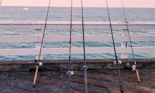 Best Fishing Rods: Berkley Cherrywood HD vs. Abu Garcia Vendetta vs. Shimano
