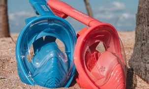 Full Face Snorkel Mask Reviews: Wildhorn Seaview 180 vs. Tribord Subea