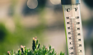 What is the Best Outdoor Thermometer: ThermoPro vs. La Crosse vs. Bjerg Instruments