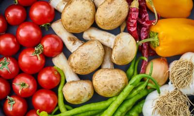 Best Food Processor in 2020: Ninja vs. Braun vs. Breville vs. Cuisinart