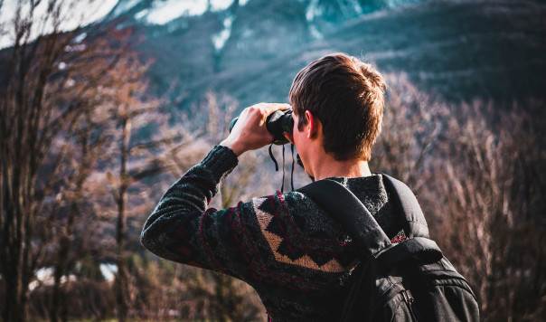 Best Binoculars Reviewed: For Birding, Hunting and Night Vision