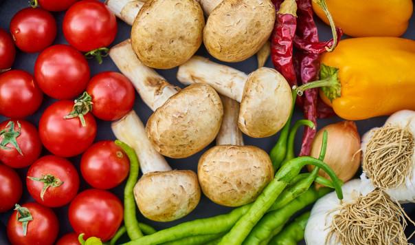 Best Food Processor in 2021: Ninja vs. Braun vs. Breville vs. Cuisinart