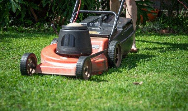 Best GreenWorks Self-Propelled Lawn Mowers: GreenWorks 25142 vs. 25302 vs. 25022