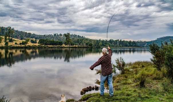 Best Shimano Spinning Reels on the Market Reviewed and Tested