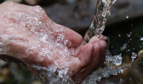 Top 3 Best Water Coolers You Can Buy in 2021: Oasis vs. Igloo vs. Elkay